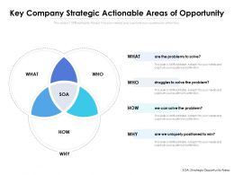 Key Company Strategic Actionable Areas Of Opportunity