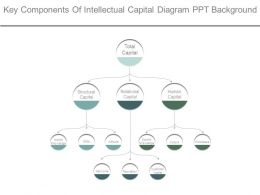 Key Components Of Intellectual Capital Diagram Ppt Background