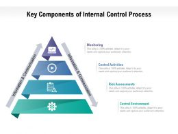 Key Components Of Internal Control Process