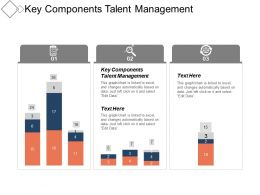 Key Components Talent Management Ppt Powerpoint Presentation File Images Cpb