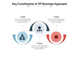 Key Constituents Of 3P Business Approach