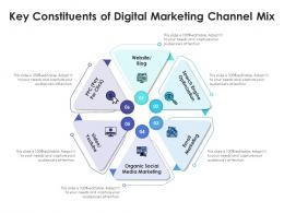 Key Constituents Of Digital Marketing Channel Mix