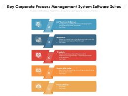 Key Corporate Process Management System Software Suites