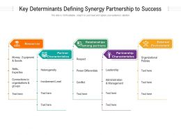 Key Determinants Defining Synergy Partnership To Success