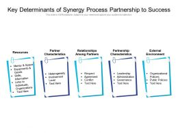 Key Determinants Of Synergy Process Partnership To Success