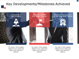 Key Developments Milestones Achieved Ppt Infographics Diagrams