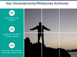 Key Developments Milestones Achieved Ppt Model Display