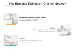 Key Elements Distribution Channel Strategy Ppt Powerpoint Presentation Professional Cpb