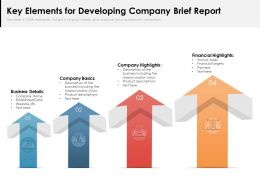 Key Elements For Developing Company Brief Report