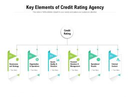Key Elements Of Credit Rating Agency