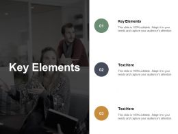 Key Elements Ppt Powerpoint Presentation Gallery Graphic Images Cpb