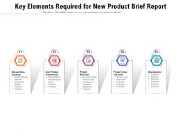 Key Elements Required For New Product Brief Report