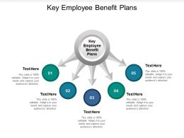 Key Employee Benefit Plans Ppt Powerpoint Presentation Visual Aids Layouts Cpb