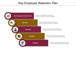 Key Employee Retention Plan Ppt Powerpoint Presentation Layouts Microsoft Cpb