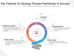 Key Features For Synergy Process Partnership To Success