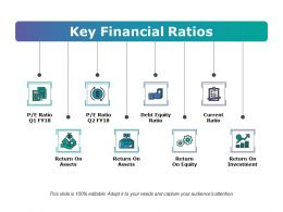 Key Financial Ratios Ppt Examples Professional