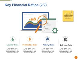 Key Financial Ratios Ppt Pictures Mockup