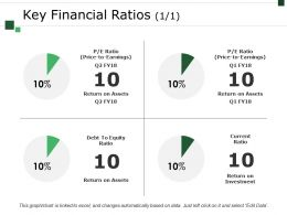 Key Financial Ratios Template 1 Example Of Ppt Presentation