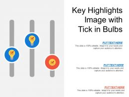Key Highlights Image With Tick In Bulbs