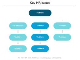Key HR Issues Ppt Powerpoint Presentation Styles Graphics Cpb
