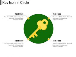 Key Icon In Circle