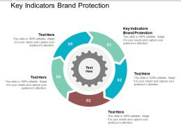 Key Indicators Brand Protection Ppt Powerpoint Presentation Model Icon Cpb