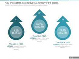 Key Indicators Executive Summary Ppt Ideas
