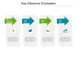 Key Influencer Ecosystem Ppt Powerpoint Presentation Outline Infographic Template Cpb