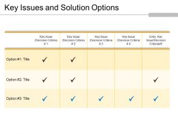 Key Issues And Solution Options Powerpoint Slide Introduction