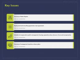 Key Issues Consulting Ppt Powerpoint Presentation Icon Sample