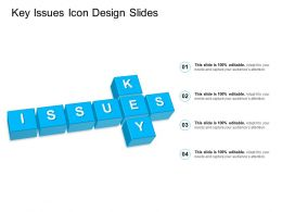 Key Issues Icon Design Slides