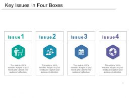 Key Issues In Four Boxes