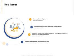Key Issues Loan Agreements Ppt Powerpoint Presentation Example File