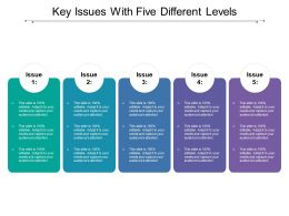 Key Issues With Five Different Levels