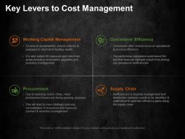 Key Levers To Cost Management Ppt Summary Gridlines