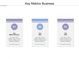 Key Metrics Business Ppt Powerpoint Presentation Ideas Microsoft Cpb