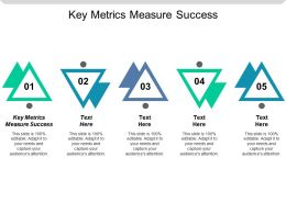 Key Metrics Measure Success Ppt Powerpoint Presentation Gallery Slide Cpb