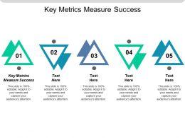 Key Metrics Measure Success Ppt Powerpoint Presentation Gallery Slide Cpb