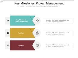 Key Milestones Project Management Ppt Powerpoint Presentation Portfolio Outfit Cpb