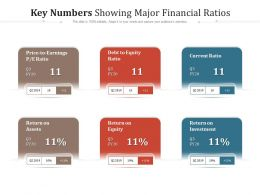 Key Numbers Showing Major Financial Ratios