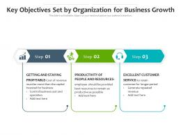 Key Objectives Set By Organization For Business Growth