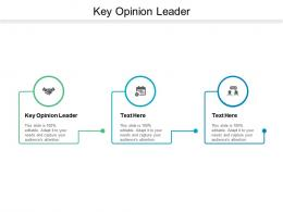 Key Opinion Leader Ppt Powerpoint Presentation Pictures Graphic Images Cpb