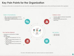Key Pain Points For The Organization Ppt Powerpoint Presentation Icon Display