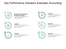 Key Performance Indicators Examples Accounting Ppt Powerpoint Presentation Styles Example Cpb