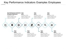 Key Performance Indicators Examples Employees Ppt Powerpoint Gallery Cpb