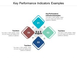 Key Performance Indicators Examples Ppt Powerpoint Presentation Icon Tips Cpb