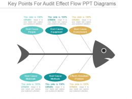 Key Points For Audit Effect Flow Ppt Diagrams