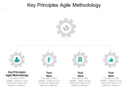 Key Principles Agile Methodology Ppt Powerpoint Presentation Background Image Cpb