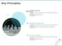 Key Principles Strategies Consumers Ppt Powerpoint Presentation Infographics Icon