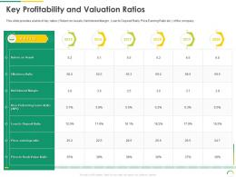 Key Profitability And Valuation Ratios Post IPO Equity Investment Pitch Ppt Designs